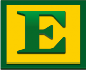 E_Logo 2013 copy